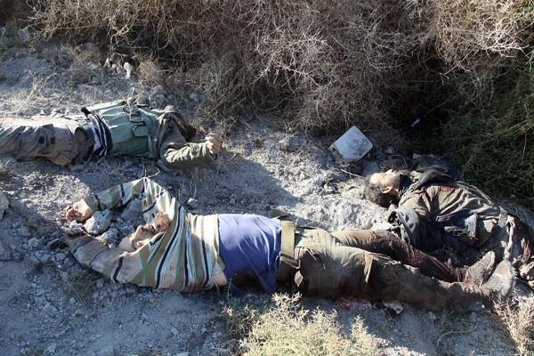 الجيش السوري ينشر اسماء ارهابيين اردنيين وسعوديين تمت تصفيتهم في درعا