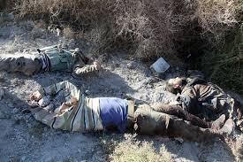 """قوات الجيش تقتل 11 ارهابيا وتصيب 18 اخرين من عناصر """" داعش """" الوهابي وحلفائهم من بقايا نظام صدام شمال غرب الفلوجة"""