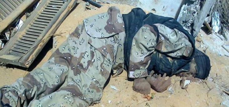 الجيش المصري يعلن قتل 241 ارهابيا في عمليات امنية شمالي سيناء