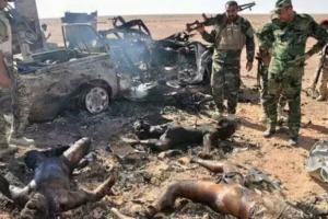 قتلى داعش في سامراء5