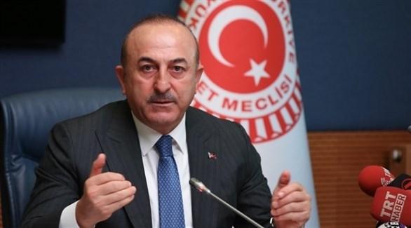 وزير الخارجية التركي :  وجودنا في سوريا وليبيا يمثل ضمانا لاستقرار الأوضاع فيهما
